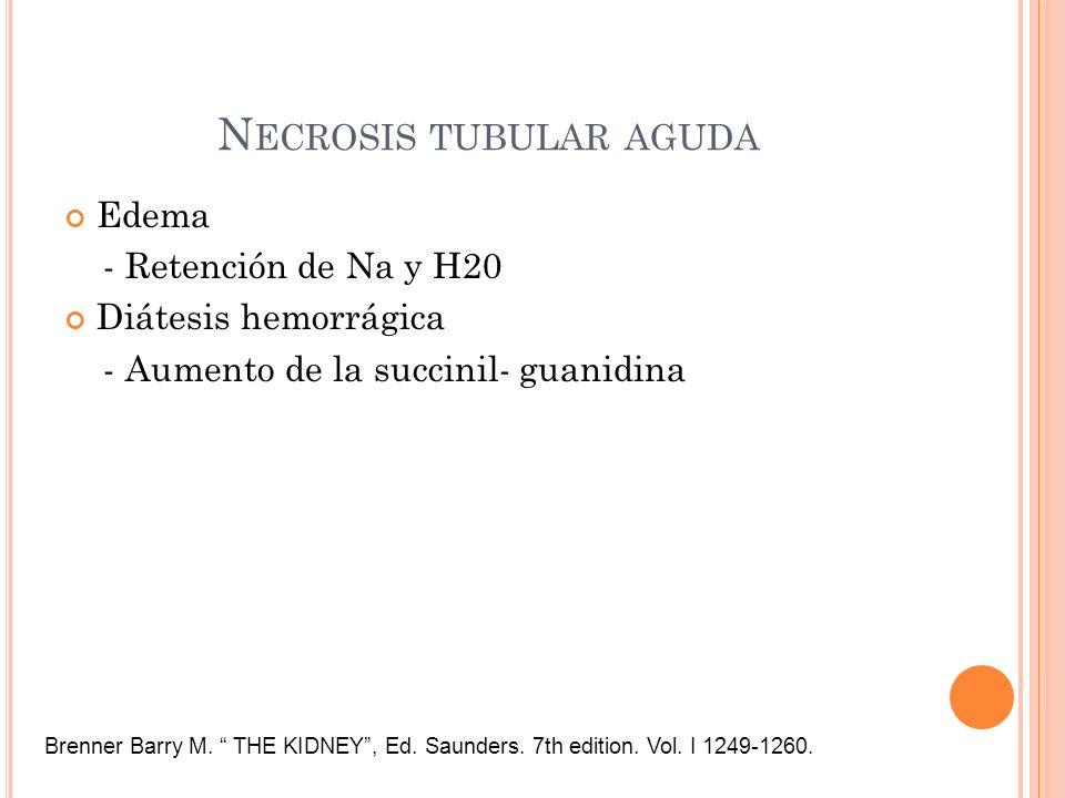 N ECROSIS TUBULAR AGUDA Edema - Retención de Na y H20 Diátesis hemorrágica - Aumento de la succinil- guanidina Brenner Barry M. THE KIDNEY, Ed. Saunde