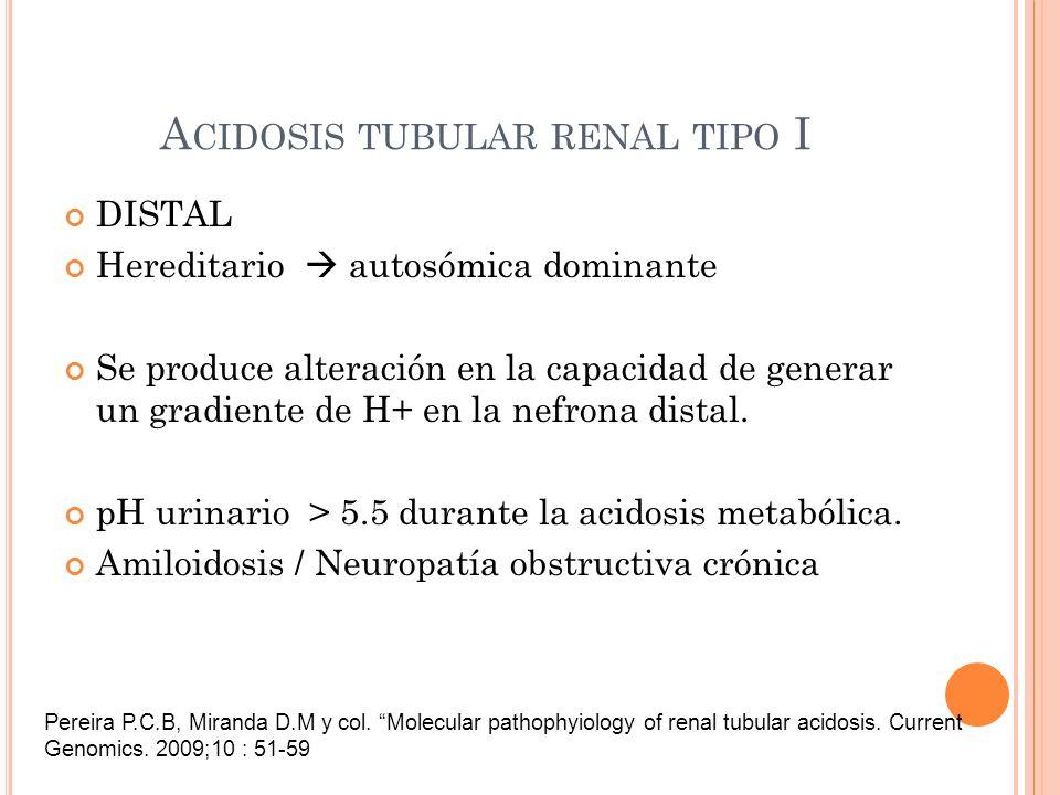 A CIDOSIS TUBULAR RENAL TIPO I DISTAL Hereditario autosómica dominante Se produce alteración en la capacidad de generar un gradiente de H+ en la nefro