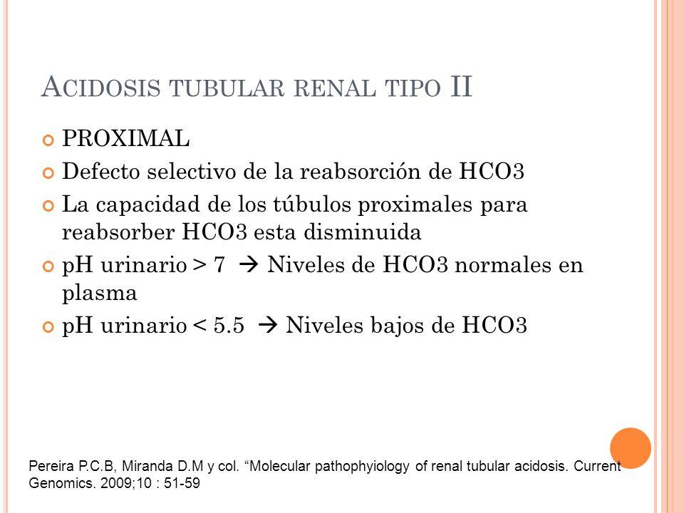 A CIDOSIS TUBULAR RENAL TIPO II PROXIMAL Defecto selectivo de la reabsorción de HCO3 La capacidad de los túbulos proximales para reabsorber HCO3 esta