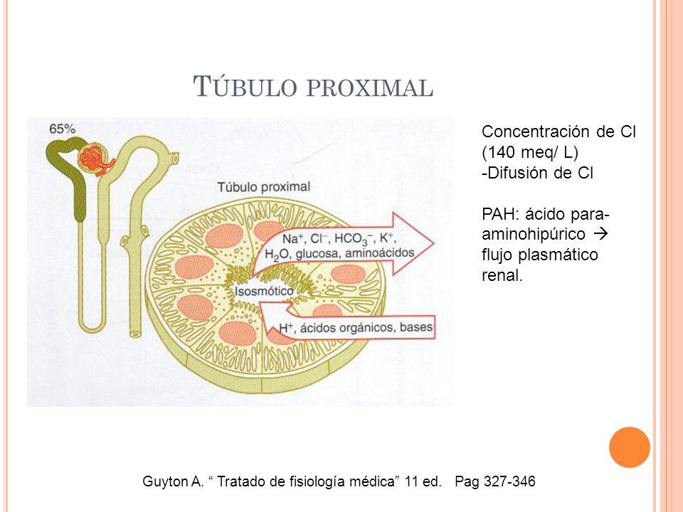 T ÚBULO PROXIMAL Guyton A. Tratado de fisiología médica 11 ed. Pag 327-346 Concentración de Cl (140 meq/ L) -Difusión de Cl PAH: ácido para- aminohipú