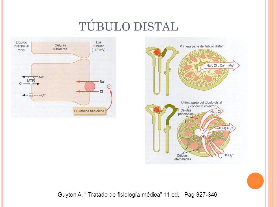 TÚBULO DISTAL Guyton A. Tratado de fisiología médica 11 ed. Pag 327-346
