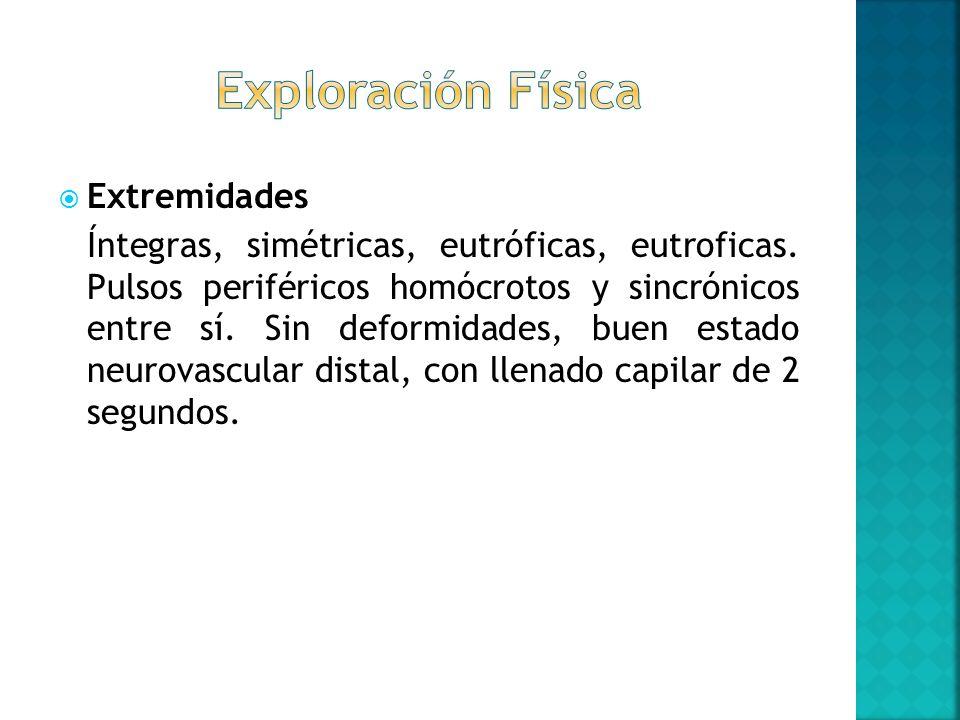 Extremidades Íntegras, simétricas, eutróficas, eutroficas. Pulsos periféricos homócrotos y sincrónicos entre sí. Sin deformidades, buen estado neurova