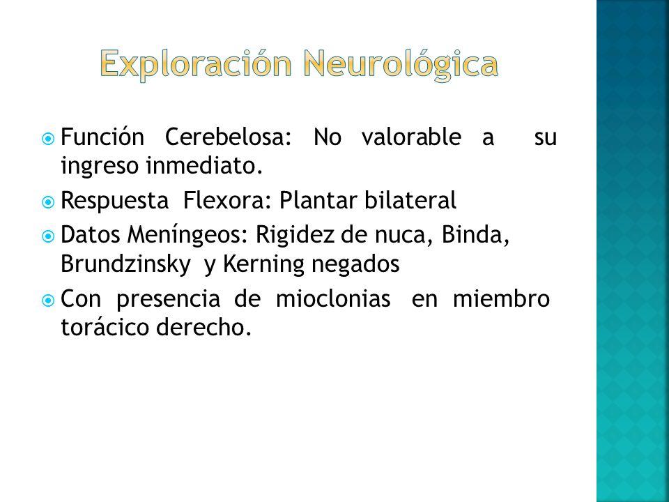 Función Cerebelosa: No valorable a su ingreso inmediato. Respuesta Flexora: Plantar bilateral Datos Meníngeos: Rigidez de nuca, Binda, Brundzinsky y K