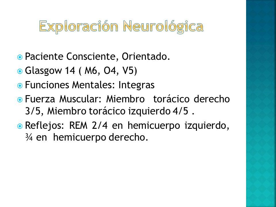 Paciente Consciente, Orientado. Glasgow 14 ( M6, O4, V5) Funciones Mentales: Integras Fuerza Muscular: Miembro torácico derecho 3/5, Miembro torácico