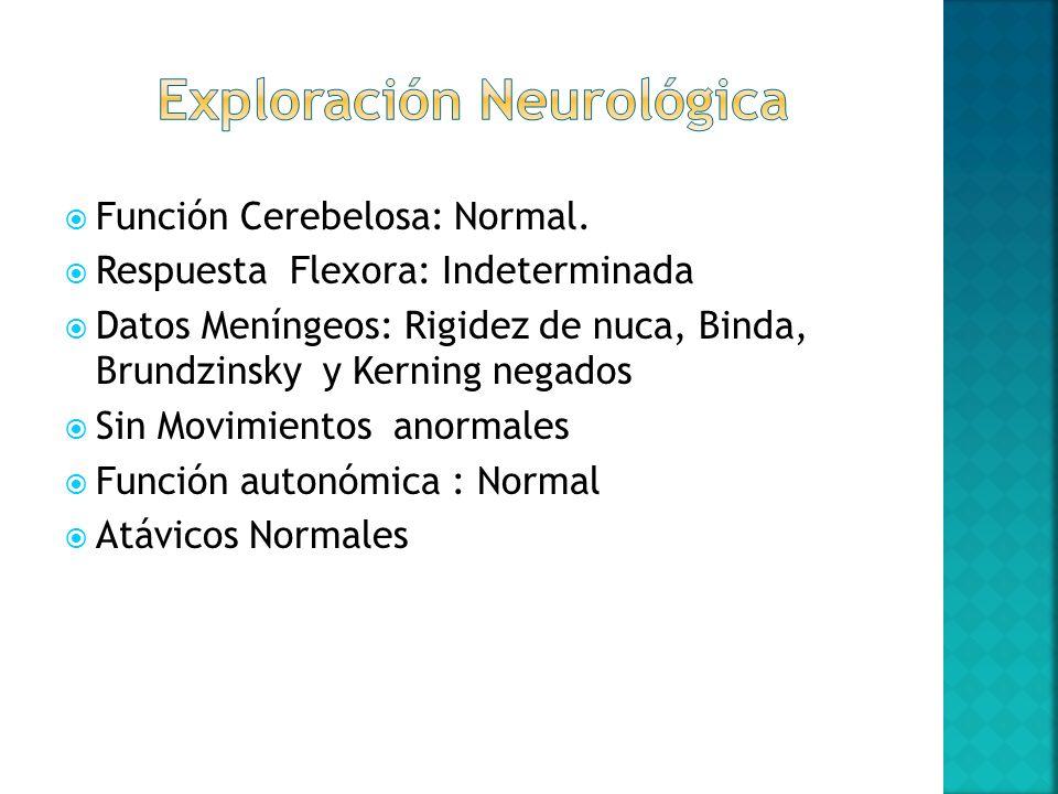 Función Cerebelosa: Normal. Respuesta Flexora: Indeterminada Datos Meníngeos: Rigidez de nuca, Binda, Brundzinsky y Kerning negados Sin Movimientos an