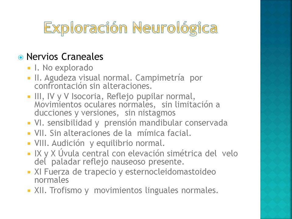 Nervios Craneales I. No explorado II. Agudeza visual normal. Campimetría por confrontación sin alteraciones. III, IV y V Isocoria, Reflejo pupilar nor