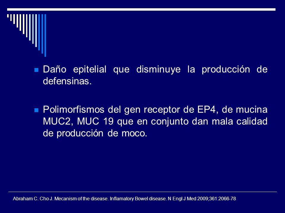 Daño epitelial que disminuye la producción de defensinas. Polimorfismos del gen receptor de EP4, de mucina MUC2, MUC 19 que en conjunto dan mala calid