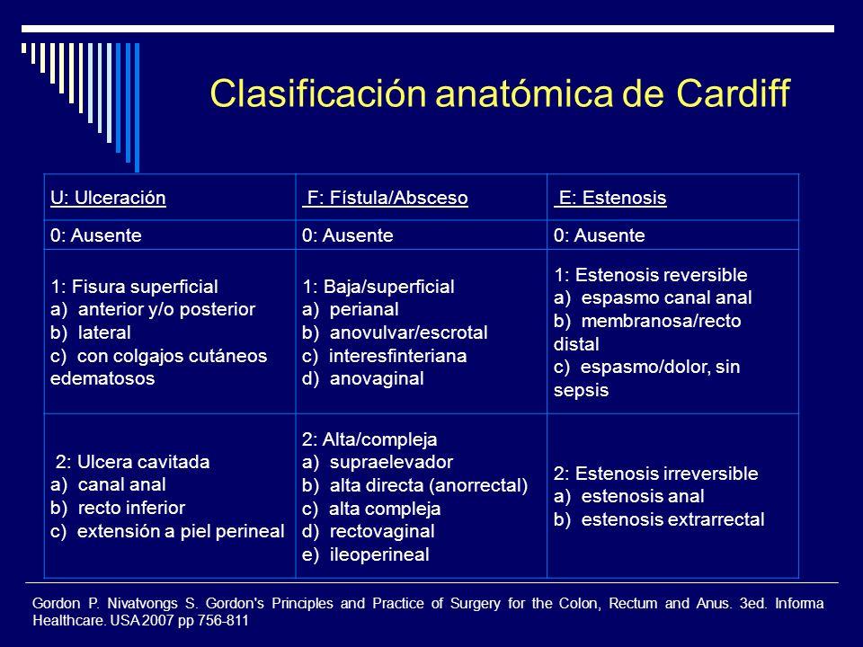 U: Ulceración F: Fístula/Absceso E: Estenosis 0: Ausente 1: Fisura superficial a) anterior y/o posterior b) lateral c) con colgajos cutáneos edematoso