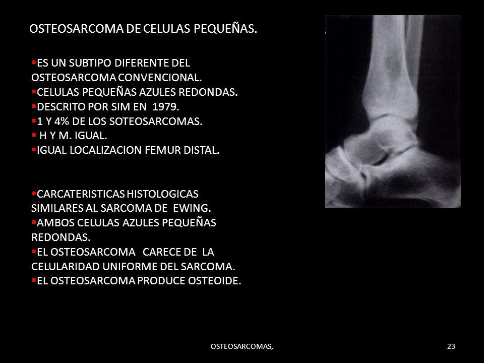 OSTEOSARCOMA DE CELULAS PEQUEÑAS. ES UN SUBTIPO DIFERENTE DEL OSTEOSARCOMA CONVENCIONAL. CELULAS PEQUEÑAS AZULES REDONDAS. DESCRITO POR SIM EN 1979. 1