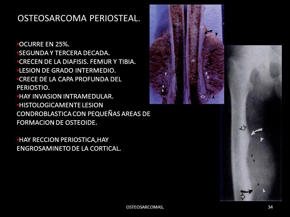 OSTEOSARCOMA PERIOSTEAL. OSTEOSARCOMAS,34 OCURRE EN 25%. SEGUNDA Y TERCERA DECADA. CRECEN DE LA DIAFISIS. FEMUR Y TIBIA. LESION DE GRADO INTERMEDIO. C