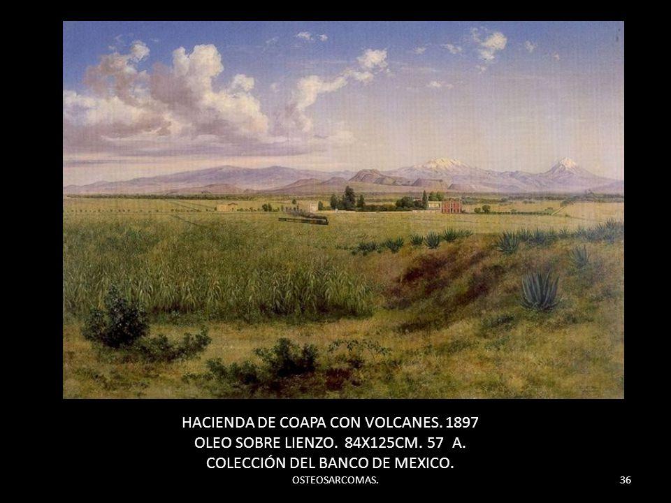 OSTEOSARCOMAS.36 HACIENDA DE COAPA CON VOLCANES. 1897 OLEO SOBRE LIENZO. 84X125CM. 57 A. COLECCIÓN DEL BANCO DE MEXICO.