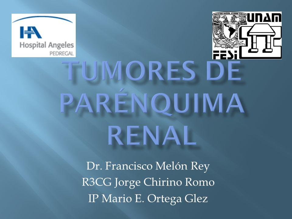 Dr. Francisco Melón Rey R3CG Jorge Chirino Romo IP Mario E. Ortega Glez