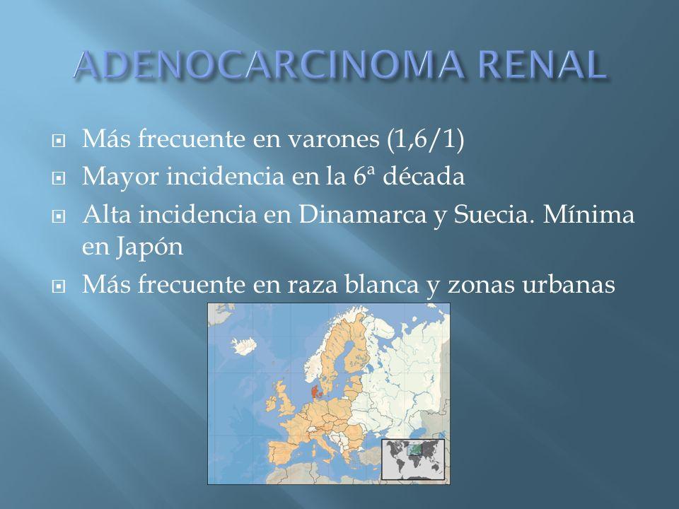 Más frecuente en varones (1,6/1) Mayor incidencia en la 6ª década Alta incidencia en Dinamarca y Suecia. Mínima en Japón Más frecuente en raza blanca