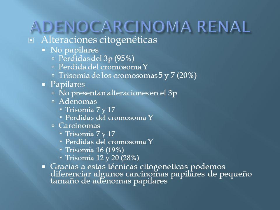 Alteraciones citogenéticas No papilares Perdidas del 3p (95%) Perdida del cromosoma Y Trisomía de los cromosomas 5 y 7 (20%) Papilares No presentan al