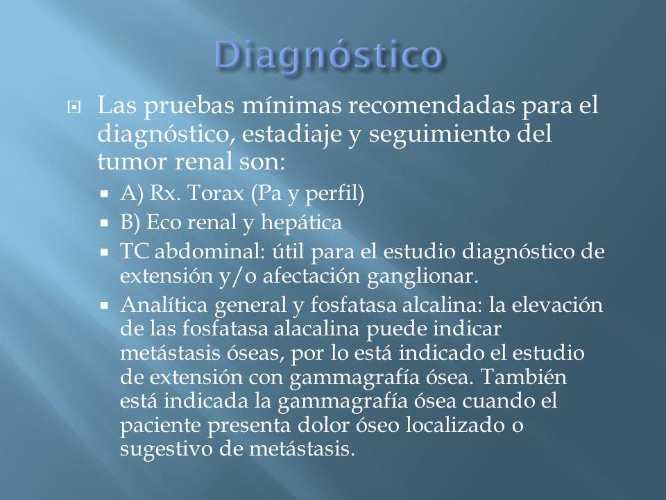 Las pruebas mínimas recomendadas para el diagnóstico, estadiaje y seguimiento del tumor renal son: A) Rx. Torax (Pa y perfil) B) Eco renal y hepática
