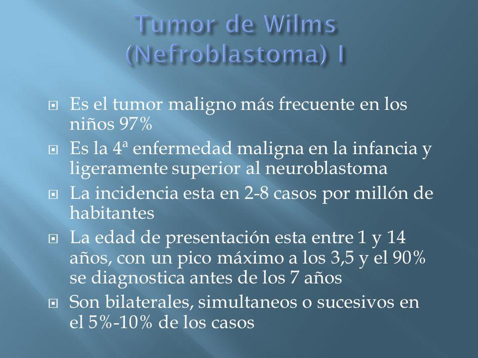 Es el tumor maligno más frecuente en los niños 97% Es la 4ª enfermedad maligna en la infancia y ligeramente superior al neuroblastoma La incidencia es
