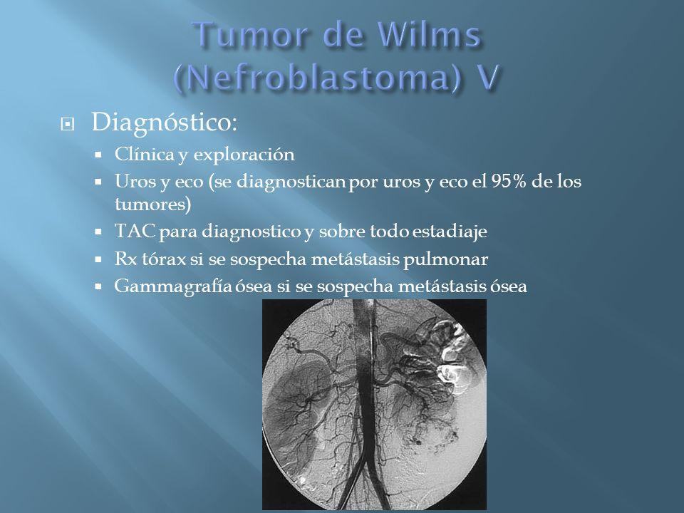 Diagnóstico: Clínica y exploración Uros y eco (se diagnostican por uros y eco el 95% de los tumores) TAC para diagnostico y sobre todo estadiaje Rx tó