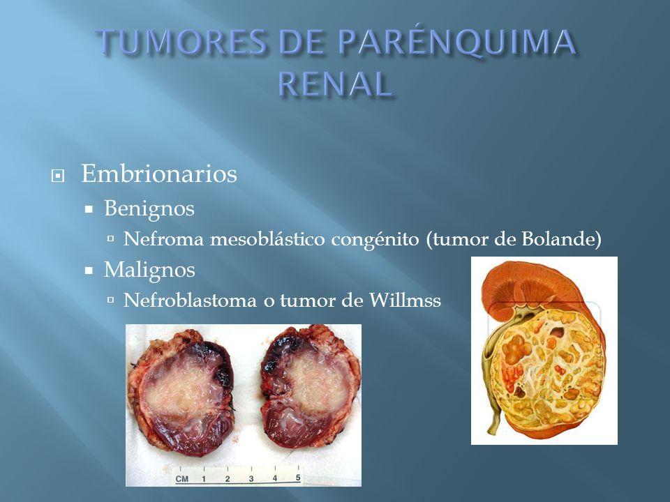 Embrionarios Benignos Nefroma mesoblástico congénito (tumor de Bolande) Malignos Nefroblastoma o tumor de Willmss