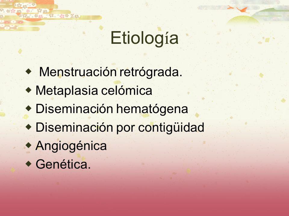Etiolog í a Menstruación retrógrada. Metaplasia celómica Diseminación hematógena Diseminación por contigüidad Angiogénica Genética.