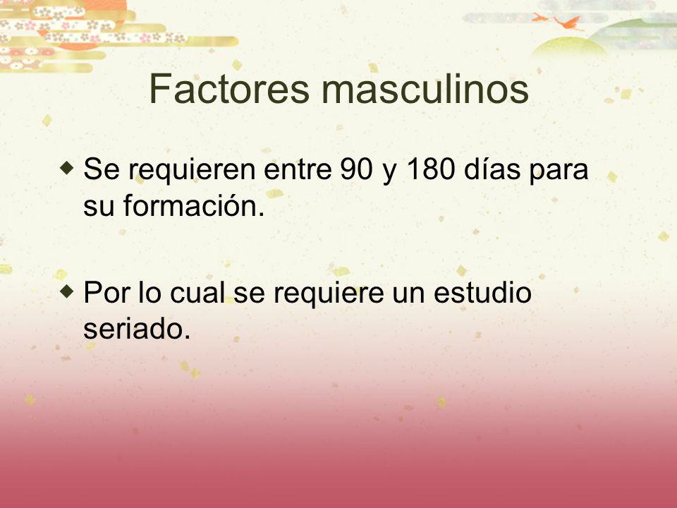 Factores masculinos Se requieren entre 90 y 180 días para su formación. Por lo cual se requiere un estudio seriado.