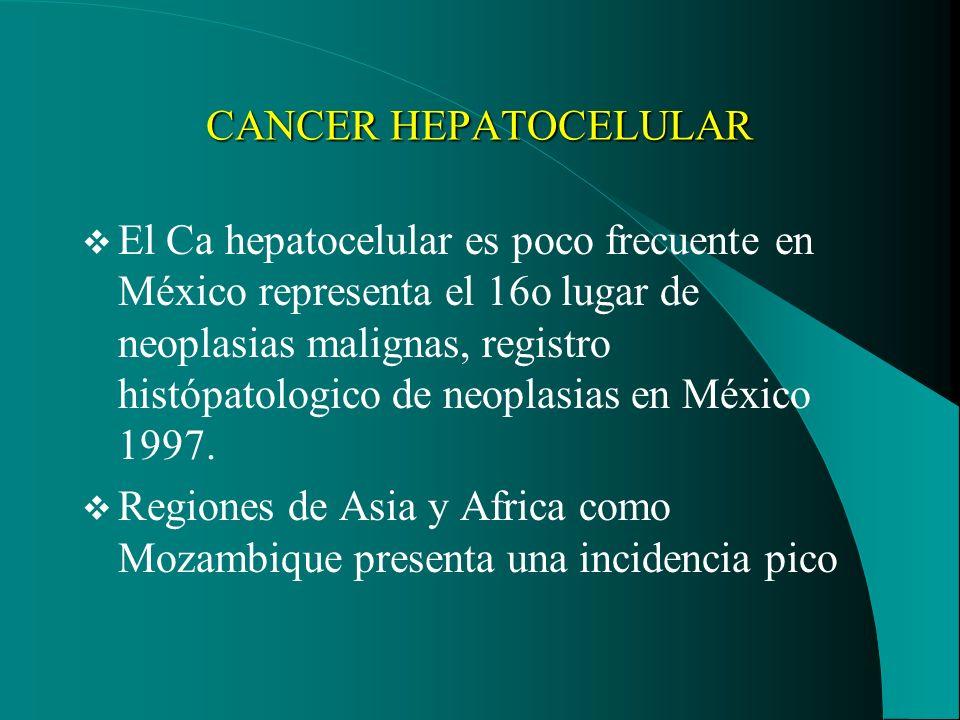 CANCER HEPATOCELULAR El Ca hepatocelular es poco frecuente en México representa el 16o lugar de neoplasias malignas, registro histópatologico de neopl