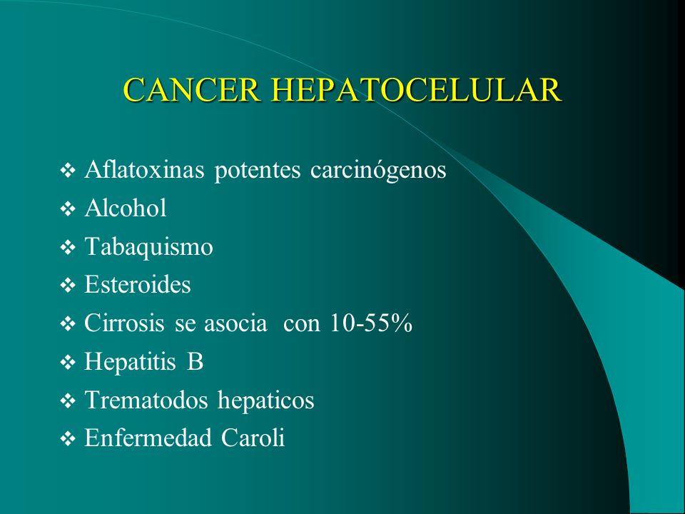 CANCER HEPATOCELULAR Aflatoxinas potentes carcinógenos Alcohol Tabaquismo Esteroides Cirrosis se asocia con 10-55% Hepatitis B Trematodos hepaticos En