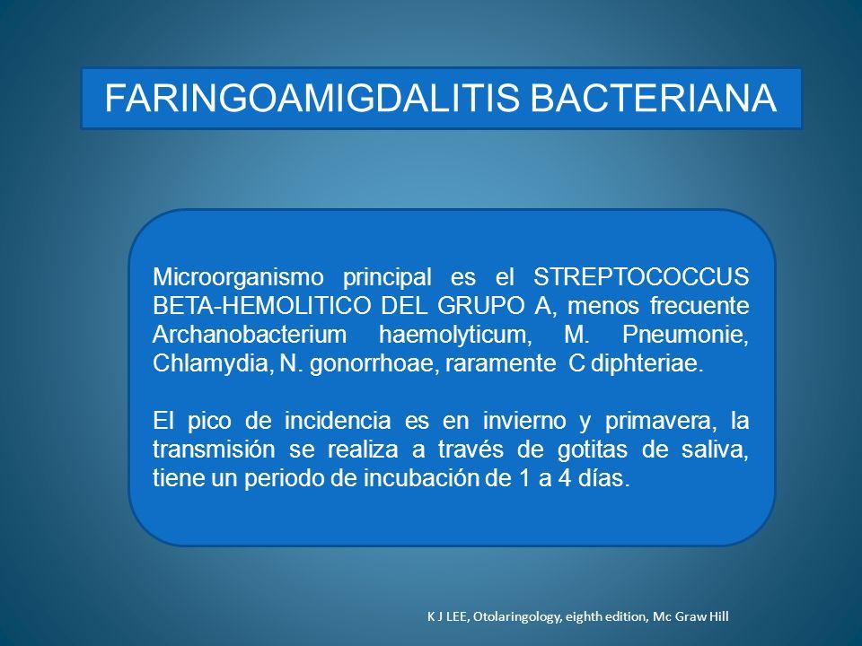 FARINGOAMIGDALITIS BACTERIANA Microorganismo principal es el STREPTOCOCCUS BETA-HEMOLITICO DEL GRUPO A, menos frecuente Archanobacterium haemolyticum,