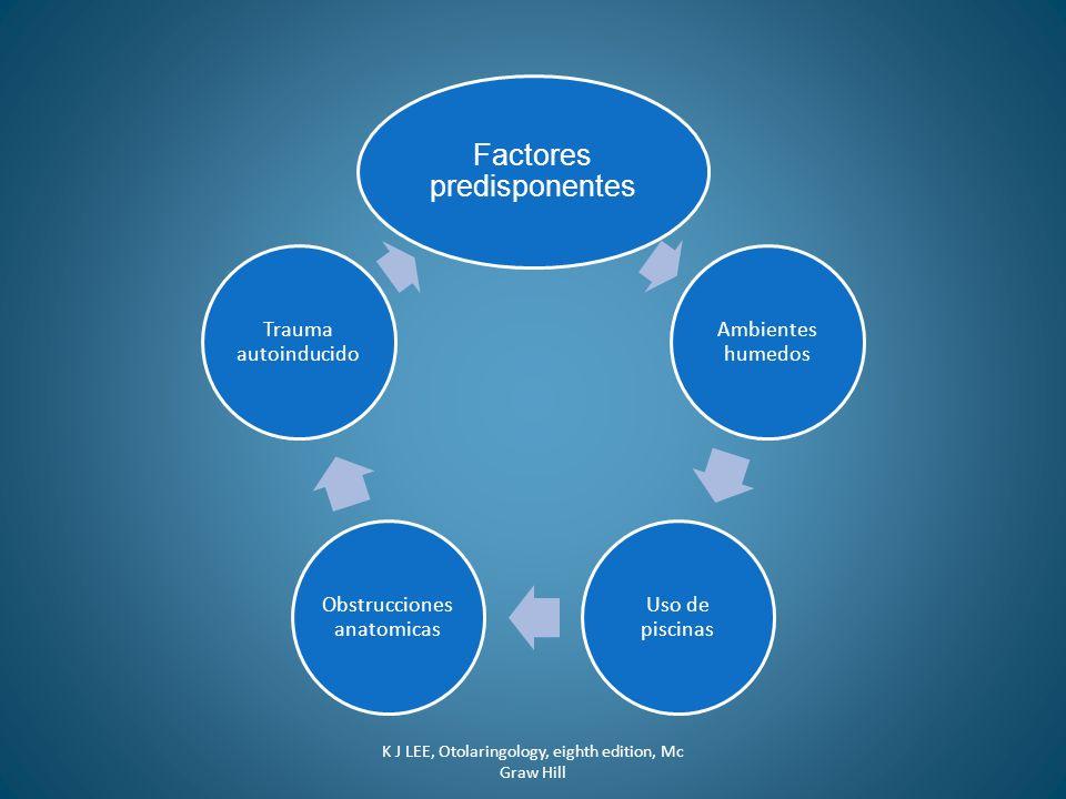 Factores predisponentes Ambientes humedos Uso de piscinas Obstrucciones anatomicas Trauma autoinducido K J LEE, Otolaringology, eighth edition, Mc Gra