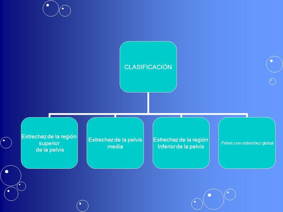 CLASIFICACIÓN Estrechez de la región superior de la pelvis Estrechez de la pelvis media Estrechez de la región Inferior de la pelvis Pelvis con estrechez global