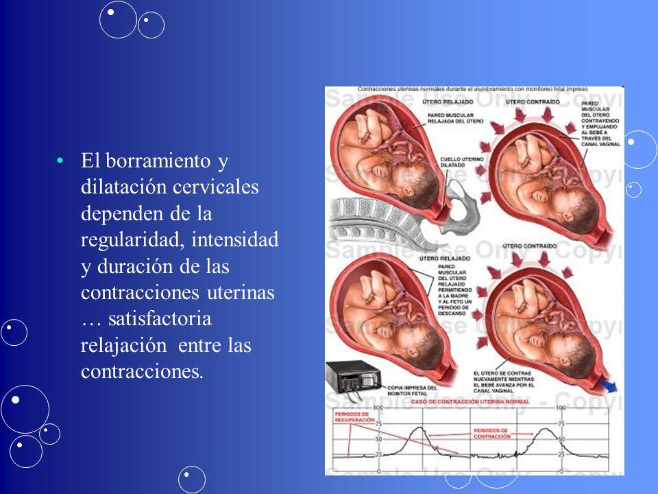El borramiento y dilatación cervicales dependen de la regularidad, intensidad y duración de las contracciones uterinas … satisfactoria relajación entre las contracciones.