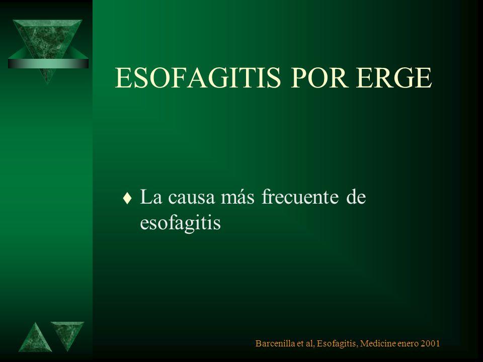ENDOSCOPIA ESOFAGITIS SEVERA