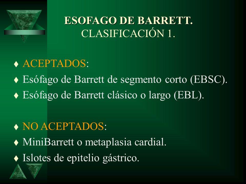 ESOFAGO DE BARRETT. ETIOPATOGENIA Crura diafragmática. Hernia hiatal no reductible Reflujo ácido y duodenogástrico. Epitelio de Barrett. EEI Dr. J VAL