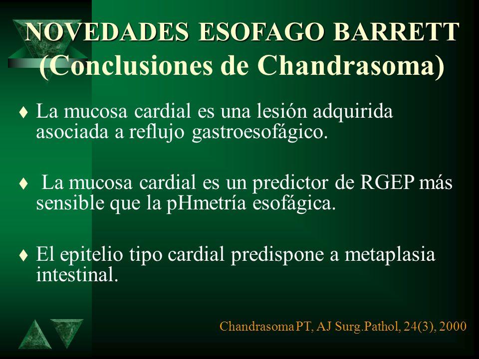 Novedades en Esófago de Barrett Novedades en Esófago de Barrett (resultados de P. Chandrasoma) La frecuencia de presentación y la longitud de la mucos