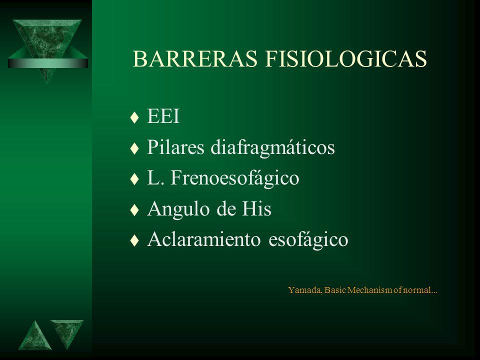HISTOLOGÍA t Mucosa t Submucosa t Muscular –Circular –Longitudinal t Adventicia t Intraabdominal - Serosa Yamada, Basic Mechanism of normal...
