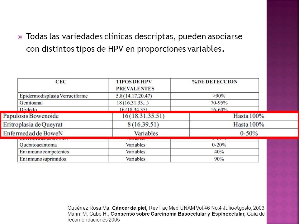 Todas las variedades clínicas descriptas, pueden asociarse con distintos tipos de HPV en proporciones variables. Gutiérrez Rosa Ma, Cáncer de piel, Re