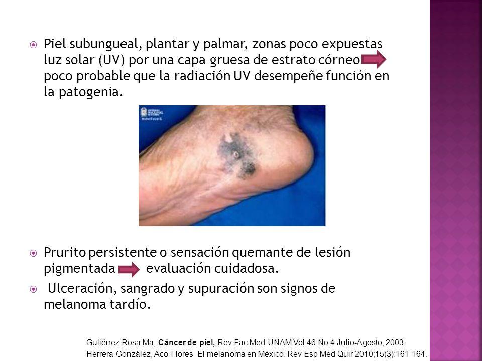 Piel subungueal, plantar y palmar, zonas poco expuestas luz solar (UV) por una capa gruesa de estrato córneo poco probable que la radiación UV desempe