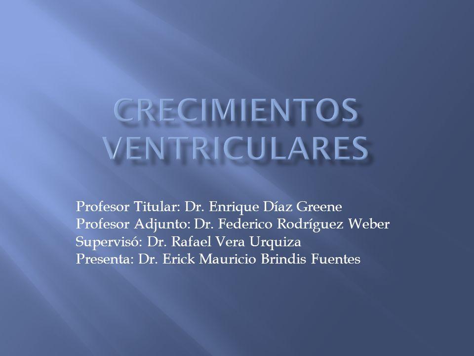 Profesor Titular: Dr.Enrique Díaz Greene Profesor Adjunto: Dr.