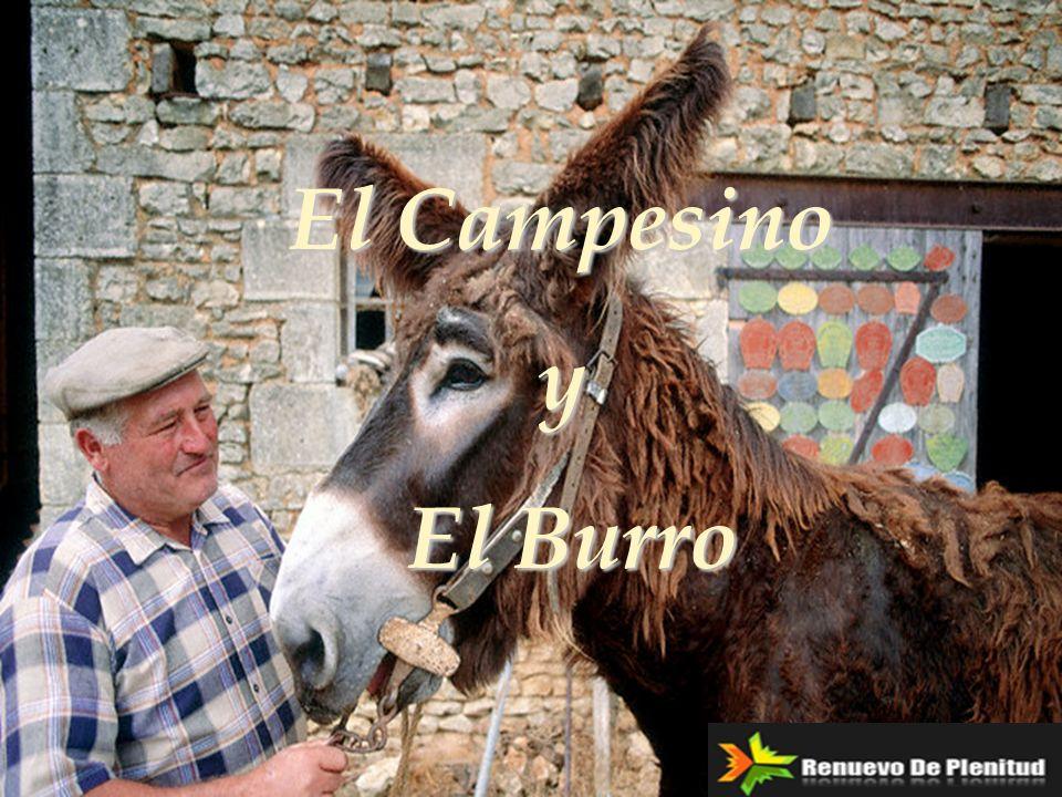 El Campesino y El Burro El Burro