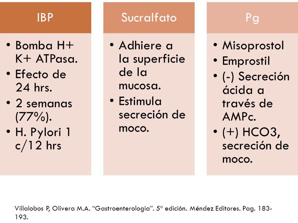 IBP Bomba H+ K+ ATPasa. Efecto de 24 hrs. 2 semanas (77%). H. Pylori 1 c/12 hrs Sucralfato Adhiere a la superficie de la mucosa. Estimula secreción de