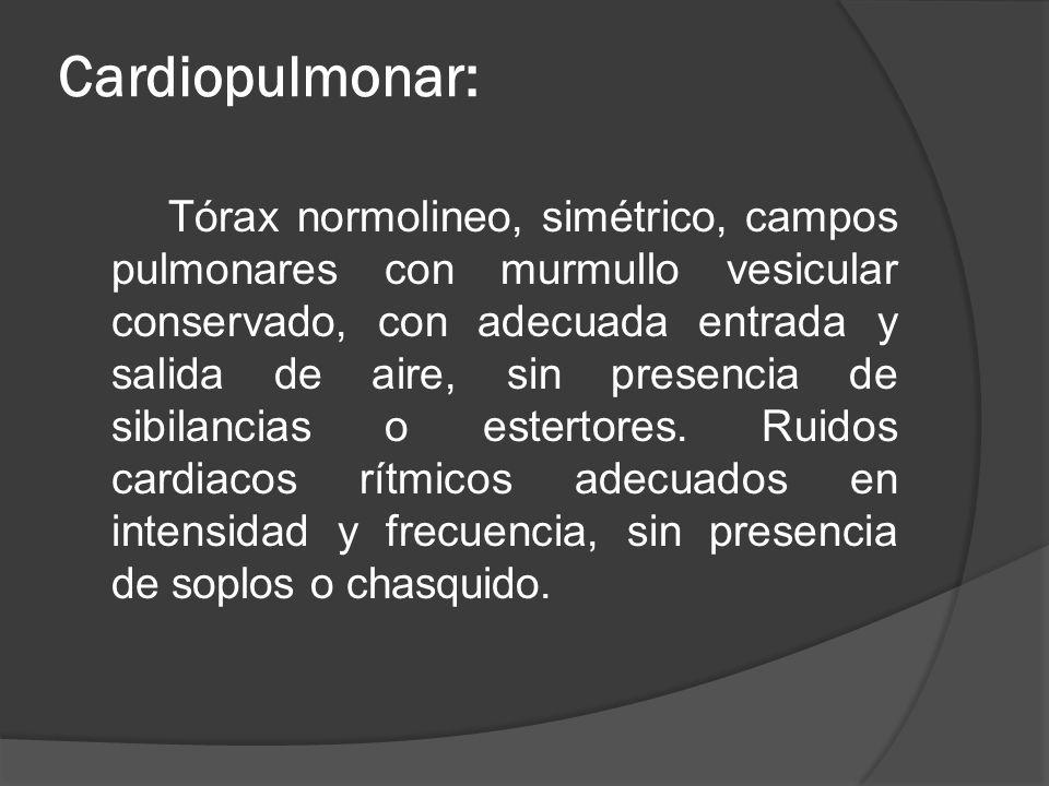 Cardiopulmonar: Tórax normolineo, simétrico, campos pulmonares con murmullo vesicular conservado, con adecuada entrada y salida de aire, sin presencia