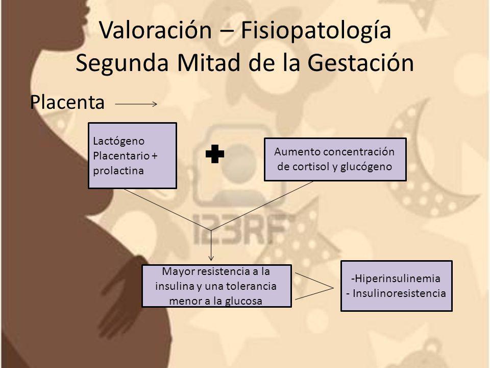 Valoración – Fisiopatología Segunda Mitad de la Gestación Estado catabólico destructivo en periodo - Hipoglicemia en ayunas de ayuno: Mayor cantidad de glucosa y aminoácidos -Hipoaminoacidémica pasa de la madre al feto, las grasas maternas (alanina) se metabolizan con mayor facilidad : lipolisis -Hiperlipidemica -Hipercetonémica Cetonuria Producción y uso de la glucosa se sobrecarga - Efecto diabetógeno por el feto en crecimiento (extrae energía de Reservas maternas)