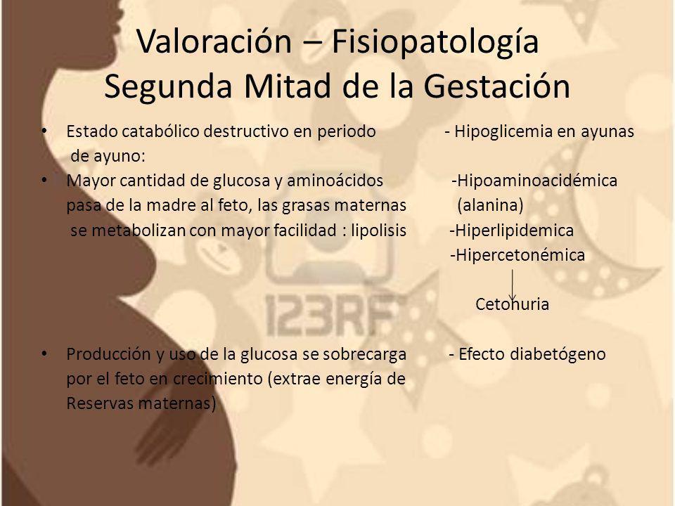 Valoración – Fisiopatología Segunda Mitad de la Gestación Estado catabólico destructivo en periodo - Hipoglicemia en ayunas de ayuno: Mayor cantidad d