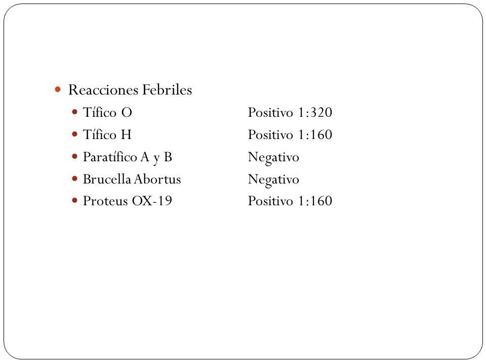 Reacciones Febriles Tífico OPositivo 1:320 Tífico HPositivo 1:160 Paratífico A y BNegativo Brucella AbortusNegativo Proteus OX-19Positivo 1:160