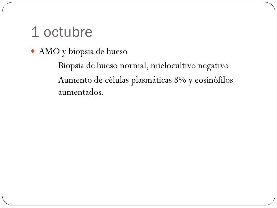 1 octubre AMO y biopsia de hueso Biopsia de hueso normal, mielocultivo negativo Aumento de células plasmáticas 8% y eosinófilos aumentados.