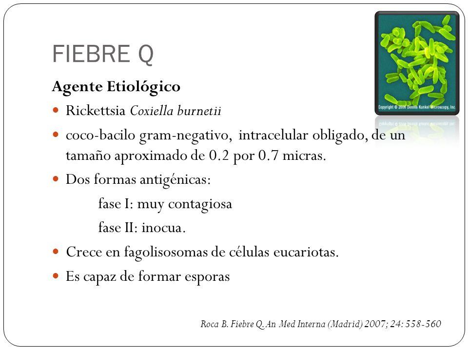 FIEBRE Q Agente Etiológico Rickettsia Coxiella burnetii coco-bacilo gram-negativo, intracelular obligado, de un tamaño aproximado de 0.2 por 0.7 micra