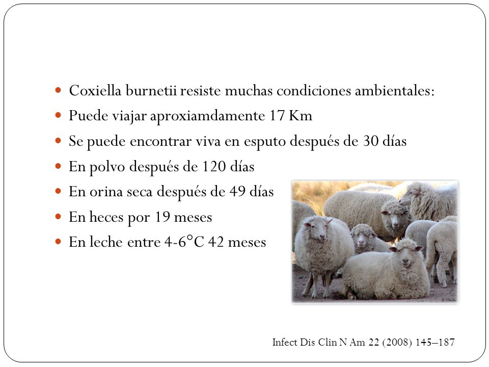 Coxiella burnetii resiste muchas condiciones ambientales: Puede viajar aproxiamdamente 17 Km Se puede encontrar viva en esputo después de 30 días En p