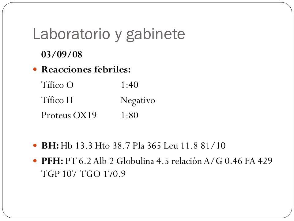 Laboratorio y gabinete 03/09/08 Reacciones febriles: Tífico O1:40 Tífico HNegativo Proteus OX191:80 BH: Hb 13.3 Hto 38.7 Pla 365 Leu 11.8 81/10 PFH: P
