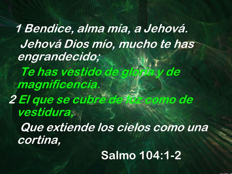 1 Bendice, alma mía, a Jehová. Jehová Dios mío, mucho te has engrandecido; Te has vestido de gloria y de magnificencia. 2 El que se cubre de luz como