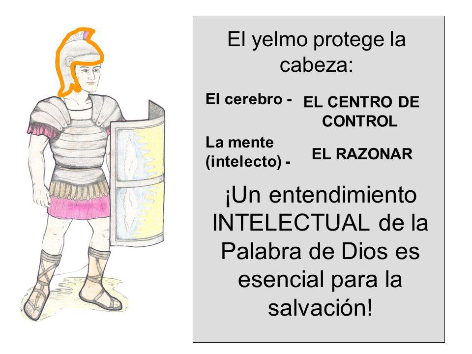 El yelmo protege la cabeza: El cerebro - La mente (intelecto) - EL CENTRO DE CONTROL EL RAZONAR ¡Un entendimiento INTELECTUAL de la Palabra de Dios es