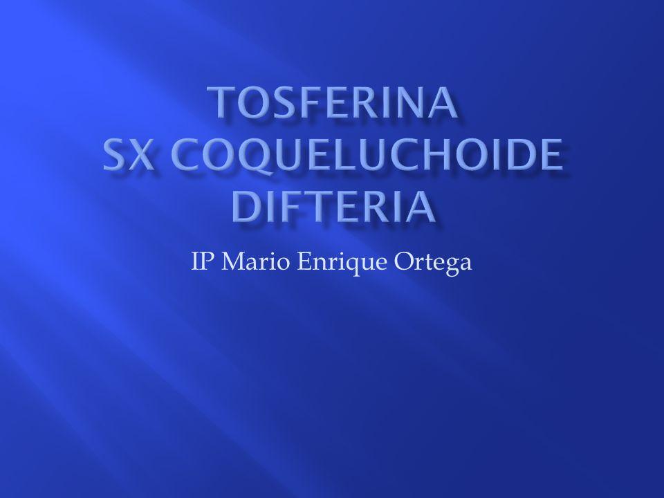 IP Mario Enrique Ortega